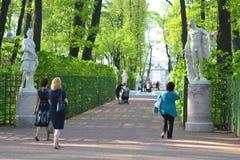 Jardín del verano del parque en StPetersburg Imagenes de archivo