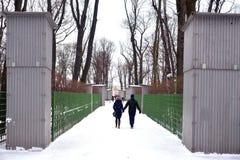Jardín del verano en St Petersburg Imágenes de archivo libres de regalías