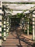 Jardín del vino de Biltmore Fotos de archivo libres de regalías