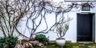 Jardín del zen Foto de archivo libre de regalías