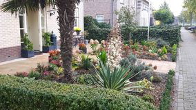 Jardín delantero en Almere Holanda Foto de archivo