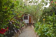 Jardín ecológico Imagenes de archivo