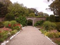 Jardín emparedado Fotografía de archivo libre de regalías