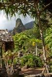 Jardín en aguja de Iao de Maui la ' Foto de archivo libre de regalías