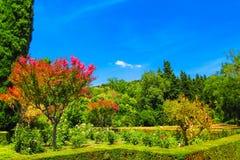 Jardín en Alhambra, España Foto de archivo