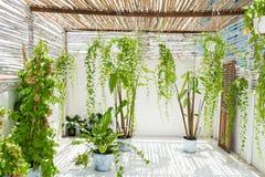 Jardín en balcón con las plantas verdes en casa fotos de archivo libres de regalías