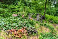 Jardín en Central Park, NYC de Strawberry Fields fotografía de archivo