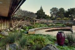 Jardín en el patio trasero Fotos de archivo