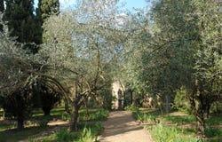 Jardín en la abadía de Fontfroide Imagen de archivo libre de regalías