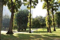 Jardín en la ciudad con luz del sol de la mañana Fotos de archivo
