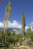 Jardín en la montaña Imagen de archivo