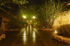 Jardín en la noche Foto de archivo libre de regalías