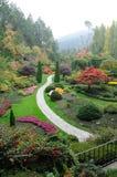 Jardín en niebla Foto de archivo libre de regalías