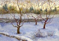 Jardín en nieve Imágenes de archivo libres de regalías
