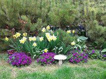 Jardín en primavera temprana Imagen de archivo