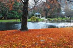 Jardín en Queenstown Imagen de archivo