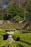 Jardín en resorte Foto de archivo