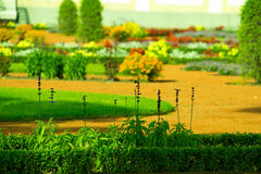 Jardín en Tallinn, flores y árboles foto de archivo libre de regalías