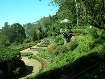 ¡Jardín en un top de la colina! imagen de archivo