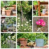 Jardín en verano Fotografía de archivo libre de regalías