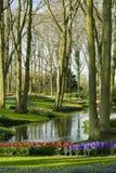 Jardín escénico en Lisse (Países Bajos) Imagenes de archivo