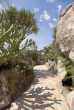 Jardín exótico de Mónaco Imagen de archivo libre de regalías