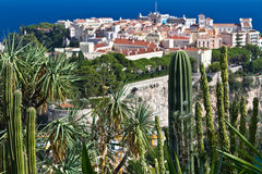 Jardín exótico de Mónaco Fotos de archivo