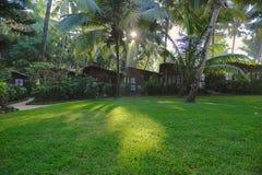 Jardín exótico en la India Imagen de archivo libre de regalías