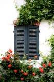 Jardín francés con las rosas y los obturadores Imágenes de archivo libres de regalías