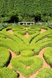 Jardín geométrico Imagen de archivo libre de regalías