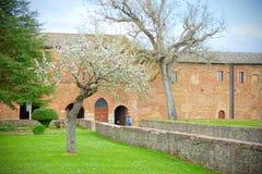 Jardín guardado medieval con los árboles en la floración cerca de una abadía arruinada Foto de archivo