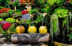 Jardín hermoso Imagenes de archivo
