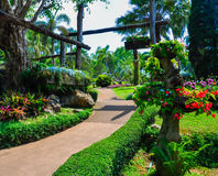 Jardín hermoso Imágenes de archivo libres de regalías