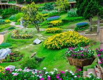 Jardín hermoso Fotos de archivo libres de regalías