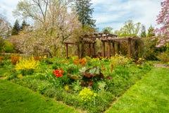 Jardín hermoso con las flores coloridas foto de archivo