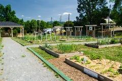 Jardín hermoso de la comunidad Imagen de archivo