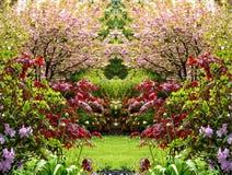 Jardín hermoso de la primavera Fotos de archivo libres de regalías