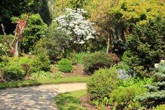 Jardín hermoso de la primavera en Escocia Imagenes de archivo