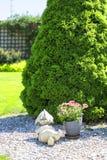 Jardín hermoso de la primavera, gnomo de piedra soñoliento decorativo imagen de archivo libre de regalías