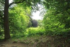 Jardín hermoso del castillo Konopiste fotos de archivo