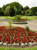 Jardín hermoso del verano fotografía de archivo libre de regalías