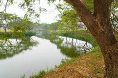 Jardín hermoso en febrero, Tailandia Fotografía de archivo