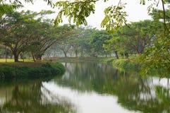 Jardín hermoso en febrero, Tailandia Foto de archivo