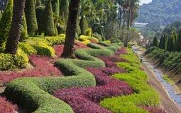 Jardín hermoso en resorte Imagen de archivo