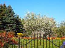 Jardín hermoso, muchos colores naturales fotos de archivo libres de regalías