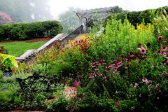 Jardín inglés en niebla Fotos de archivo libres de regalías