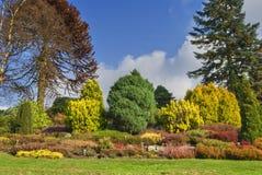 Jardín inglés en otoño Fotografía de archivo