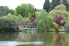 Jardín inglés maduro ajardinado con un puente sobre un lago Fotos de archivo libres de regalías