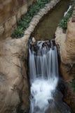 Jardín interior con el fondo de la cascada Fotografía de archivo libre de regalías
