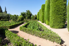 Jardín italiano Foto de archivo libre de regalías
